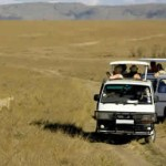 kenya-road-safari-tours