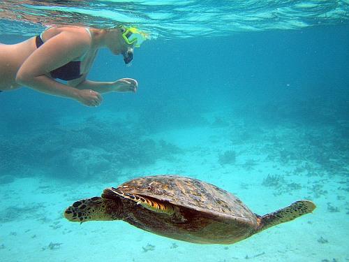 maldives51
